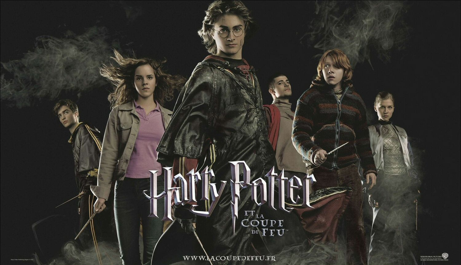Harry Potter And The Goblet Of Fire Poster 6 | Mr Movie Fiend's Movie ...